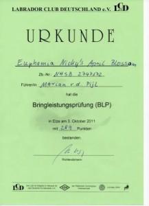 BLP Jill Urkunde005