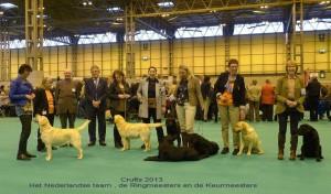 Crufts nederlands team 482850_299913266803228_1214161993_n NEDT