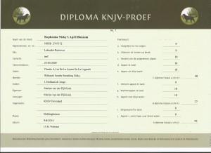 Jill KNJV A biddinghuizen 9-8-2014